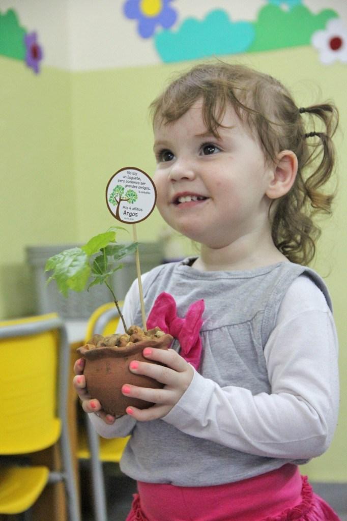 Arbolitos bebé como sorpresita de cumpleaños || www.elgrandia.com.py