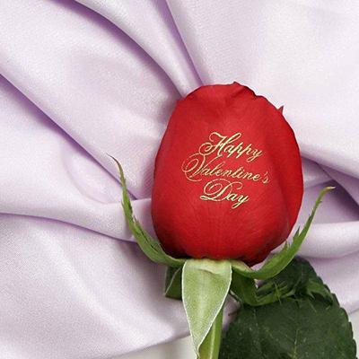 flores-impresas-paraguay-emociones-en-flores-2