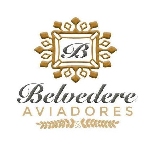 logo-belvedere-aviadores-elgrandia