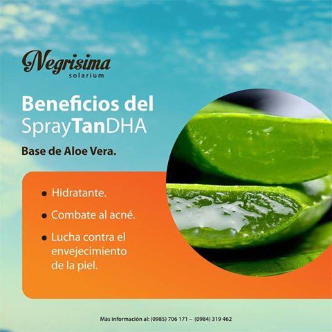 Negrisima-Solarium-elgrandia-3